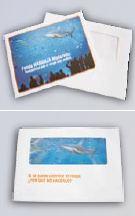 sobre y folleto